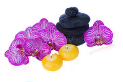 Pile of orchid and zen stones Royalty Free Stock Photo