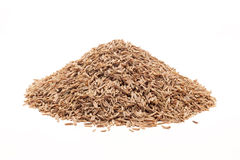 Pile of Organic Caraway. Stock Photography