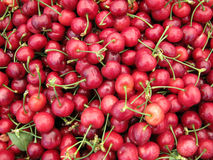 Pile of Organic Cherries Royalty Free Stock Photo