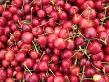 Pile of Organic Cherries Stock Images
