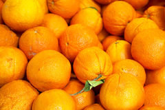 Pile of organic oranges at market stall Royalty Free Stock Images