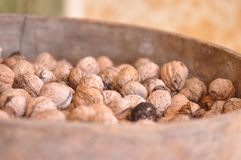 Walnut. Pile of organic walnuts in a bowl Royalty Free Stock Photos