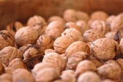 Walnut. Pile of organic walnuts. Macro detail Stock Image