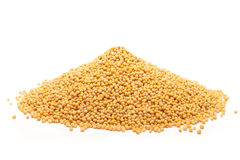 Pile of Organic yellow mustard. Stock Images