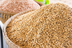 Pile paddy Royalty Free Stock Photography