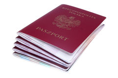 Pile of passport Stock Photography