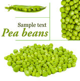 Pile of pea beans Royalty Free Stock Image