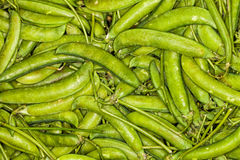 Pile of pea pods background. Macro Royalty Free Stock Photo