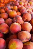 Pile of Peaches Royalty Free Stock Photos