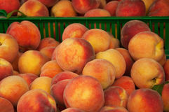 Pile of peaches Royalty Free Stock Images