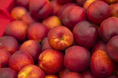 Pile of peaches Royalty Free Stock Image