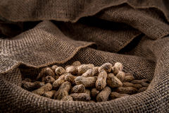 Pile of Peanuts. A pile of salty peanuts laying on a burlap sack Stock Photography