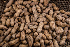 Pile of Peanuts Stock Photography