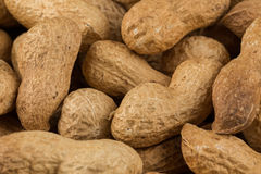 Pile of peanuts shells close up Royalty Free Stock Image