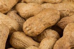 Pile of peanuts shells close up Stock Photos