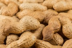 Pile of peanuts shells close up Stock Images