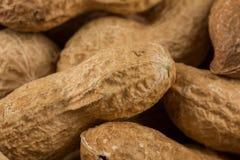 Pile of peanuts shells close up Stock Photo