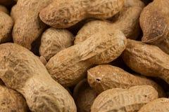 Pile of peanuts shells close up Royalty Free Stock Photos