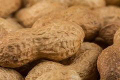 Pile of peanuts shells close up Royalty Free Stock Images