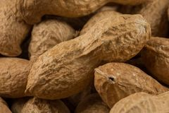 Pile of peanuts shells close up Royalty Free Stock Photo