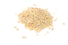Pile of Pearl Barley Royalty Free Stock Images