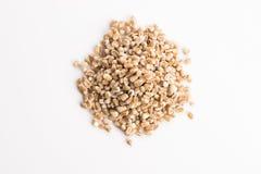 Pile of pearl barley Stock Image