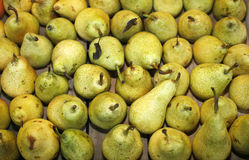 Pile of pears Royalty Free Stock Photos