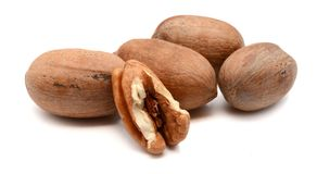 Pecan Nuts isolated on white. Pile of pecan nuts isolated. Healthy, protein Royalty Free Stock Photo