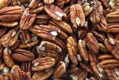 Pile of pecans Royalty Free Stock Photo