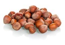 Pile of peeled hazelnuts isolated on white Royalty Free Stock Photos