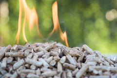 Pile of Pellets biomass Royalty Free Stock Image