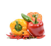 Pile of peppers isolated Royalty Free Stock Photography
