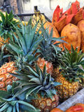 Pile of pineapples as a background Stock Image