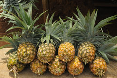 Pile of pineapples at a local market. Royalty Free Stock Images