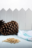 A pile of pinions from pinecones on a wooden table Royalty Free Stock Image