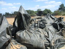 Black plastic bags in a field. Royalty Free Stock Photography