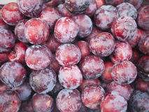 Pile of Plum Royalty Free Stock Image