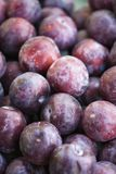 Pile of plums. Royalty Free Stock Images