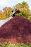 Pile of grape pomace royalty free stock images