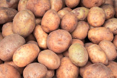 Pile of potato closeup image. Brown and yellow vegetables picture. Royalty Free Stock Photography