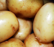 Pile of Potatoes. A close up photograph of a pile of raw potatoes Stock Images