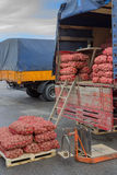 Pile of potatoes in the bags and potato truck Stock Images