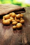 Pile of potatoes lying on wooden boards. Fresh potato.  Royalty Free Stock Photography