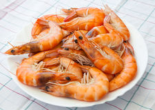 Pile of prepared shrimps lays on plate Stock Image