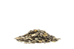 Pile of pumpkin seeds isolated on white background Royalty Free Stock Images