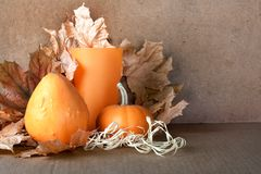 Pile of pumpkins with autumn foliage Royalty Free Stock Images
