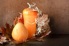 Pile of pumpkins with autumn foliage Stock Images