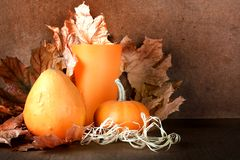 Pile of pumpkins with autumn foliage on background Stock Photos
