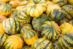 Pile of pumpkins background Royalty Free Stock Images