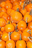 Pile of pumpkins in a fall display Stock Photo